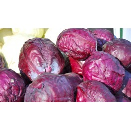 CABBAGE-RED EXPRESS